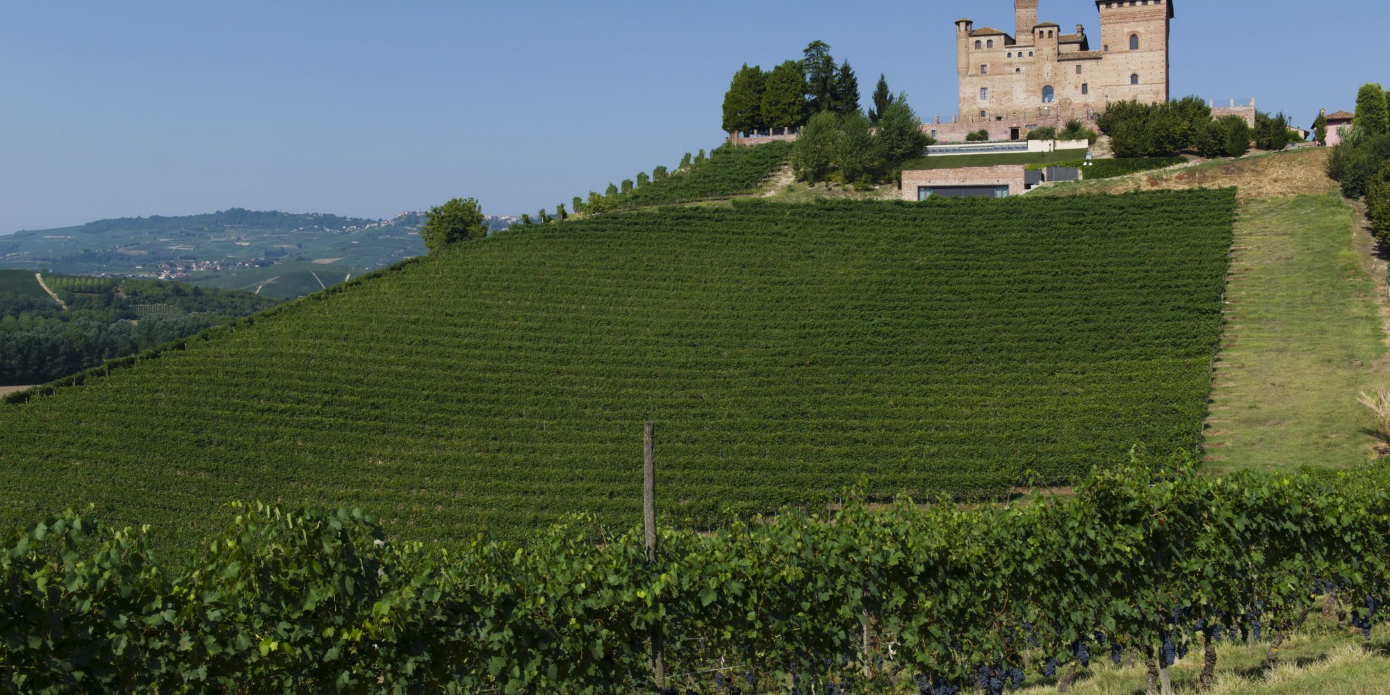 Langhe area has been recently included in the UNESCO World Heritage list